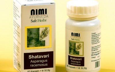 Shatavari – Der indische Spargel – Frauenpflanze