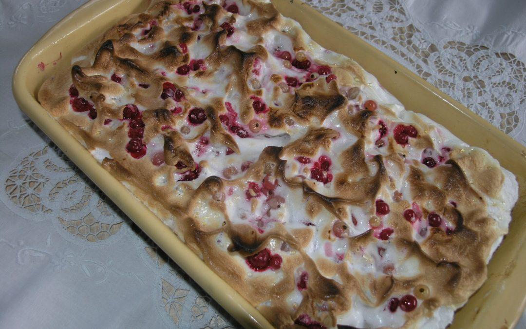 Ayurvedischer Ribiselkuchen selbst gemacht Rezept