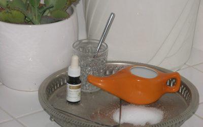 Jala Neti – Die ayurvedische Nasenspülung beugt Schnupfen vor