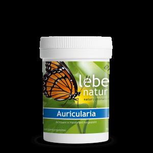 lebe natur® Auricularia Pilz BIO 90er-min