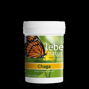 lebe natur® Chaga Pilz 90er-min