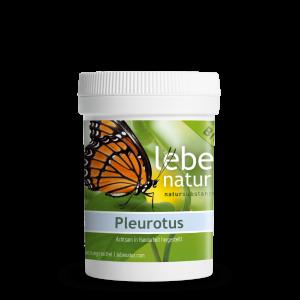 lebe natur® Pleurotus Pilz BIO 90er-min
