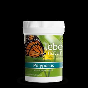 lebe natur® Polyporus Pilz BIO 90er-min