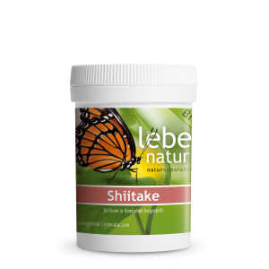 lebe natur® Shiitake Pilz BIO 90er-min