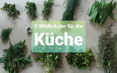9 Wildkräuter für die Küche